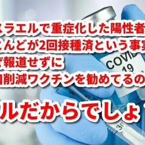 報告は氷山の一角!コロナワクチン接種後の副反応、死亡のツイートが多すぎて戦慄!vol.42