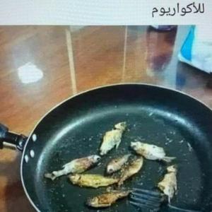 レバノンよ、フェニキア人の誇りは何処へ?