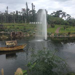 沖縄 東南植物楽園 新春 亥年 イノシシ科アグー