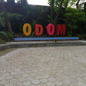 Odom garden