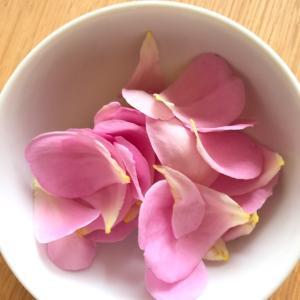 バラの花びら^ - ^