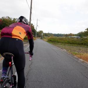 【おひるごパンライド】ロードバイクで木津の絶品ベーカリー「sadacoro」へランチライド!!