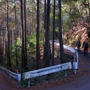 大阪からグルっと約130km!京都・嵐山を経由して保津峡「神明峠」を走る山岳コースへ!