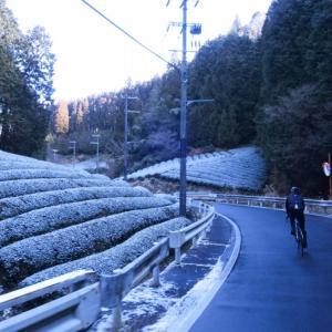 雪の降る真冬の滋賀県へ!大阪から信楽経由で栗東の「自然薯料理とろりん」へロングライド!!