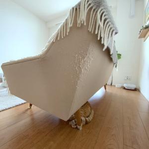 猫と暮らすソファーの爪とぎあとを、○○で修復。
