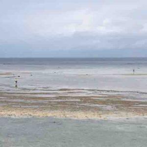 多良間島キャンプ 2日目の午後はまったり潮干狩り