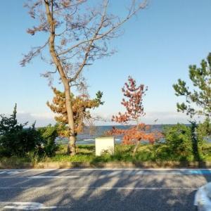 今年何度目かの、九州への旅。 2日目は鴨すきを食べて城崎温泉