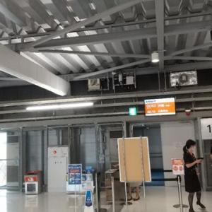 沖縄に行くのです。