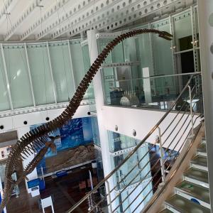蒲郡市 生命の海科学館