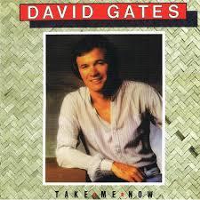 DAVID GATES「SILKY」
