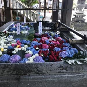 高山市/桜山風鈴祭・桜山八幡宮