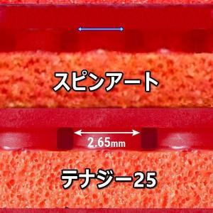 バタフライ粘着(的含む)テンション比較(09C を中心に)