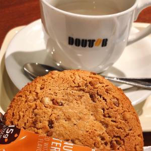 #糖質制限スイーツ #プロテインクッキー Quest Nutrition, プロテインク