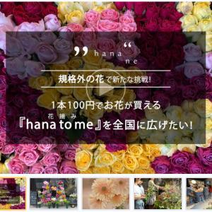 【協力のお願い】1本100円でお花が買える『hana to me(花摘み)』を全国に広めたい!