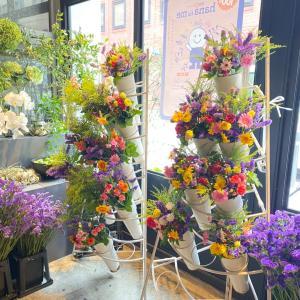 この花プロジェクト