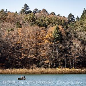 晩秋の四尾連湖