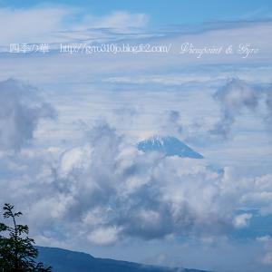 八ヶ岳高原から白樺湖方面へ