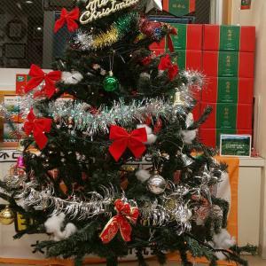 クリスマスセール開催中!!