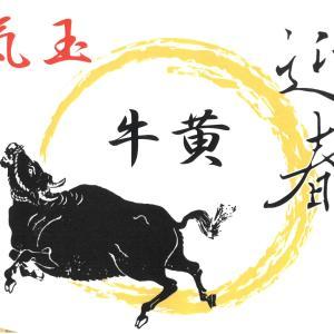 今年は丑年です!漢方の王様「牛黄」!