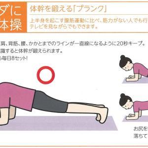 背中~腰~足首まで体幹を鍛えるストレッチ