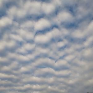 不思議な雲の模様でした