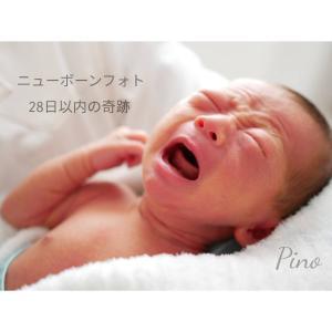 【ニューボーンフォト】赤ちゃんが産まれたら。28日以内の赤ちゃんはキセキの姿。