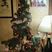 Felices fiestasフェリセス・フィエスタス! 真夏のブエノスアイレスからメリークリスマス!