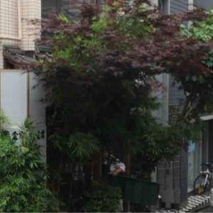 江戸富士@湯島 中落ちのタワーが高い