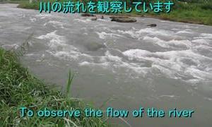 川の流れの観察・実験 No.148