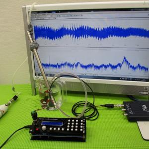 超音波プローブ(超音波システム研究所)