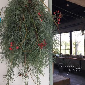糸杉の壁飾り
