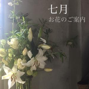 七月のお花のご案内