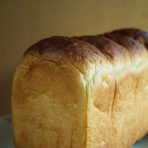 らくだのパンとウシのロールケーキ