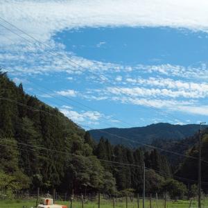 秋空と稲刈日和!