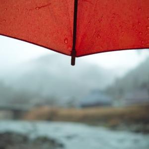 冬の嵐、いや春の嵐・・・初ナニワ出稼ぎ通い