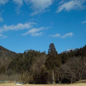 中性脂肪値・・・比良山系・武奈ヶ岳と大溝城址跡の梅