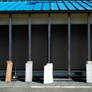 天然ワサビ・・・森の京都「京都丹波高原国定公園」