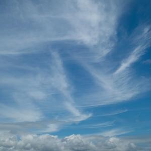 今日の青空とホタル