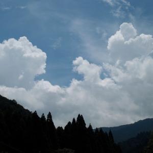 入道雲と早歩き散歩・・・カサブランカと農的庭