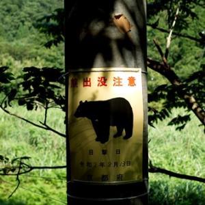 熊出没注意! 人出没中!