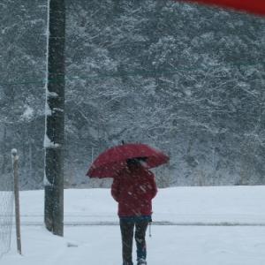 小雪・中雪・大雪の針畑雪