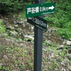 びわ湖高島トレイルランニング・・・カワセミ、モミジイチゴ、ニガイチゴ