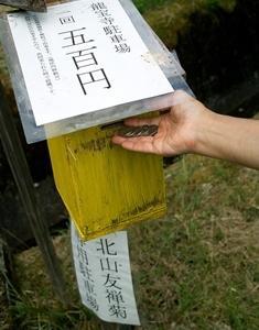 今年も、お隣の集落・久多の北山友禅菊・・・夏の甲子園