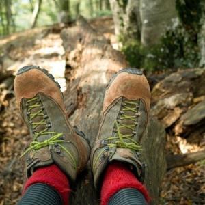 おにゅう峠・・・ブナの森散策とハンモック登山のススメ