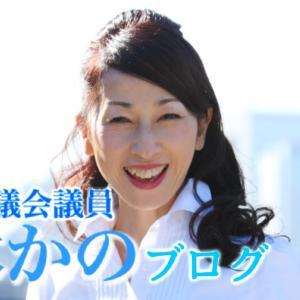 中央区議会議員の私は、熊本県で活動しているNPOに寄付したいのに、寄付できない?