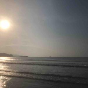 今朝も強風・・・海辺でまったり