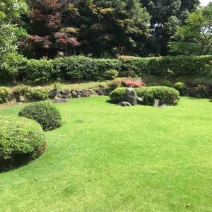 孫のお宮参りに同席♪ 葉山森戸神社から写真館、そして福山雅治がきた?料亭へ