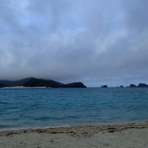 座間味島ぼっちキャンプ その2♪朝からウミガメに遭遇 そして古座間味ビーチへ