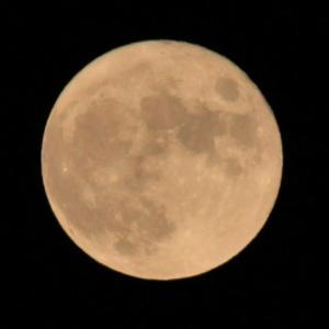8年ぶり、仲秋(ちゅうしゅう)の名月が満月の今日