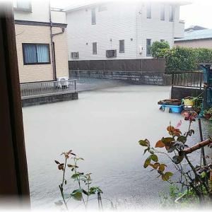 ~台風19号の~